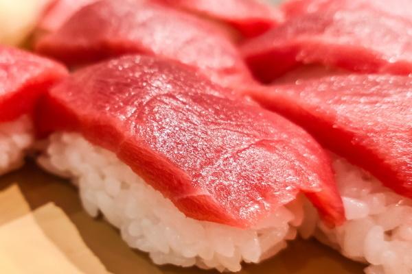 本まぐろ寿司